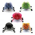 L'Original, le premier petit insecte robotisé sorti par Hexbug