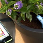 Parrot Flower Power – vos plantes vertes sont sauvées