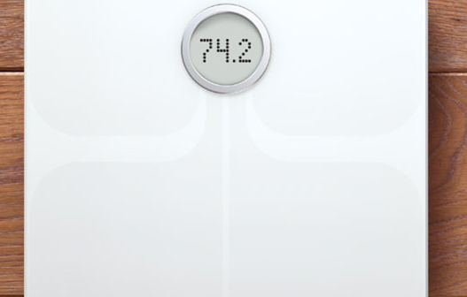 Balance Aria Fitbit